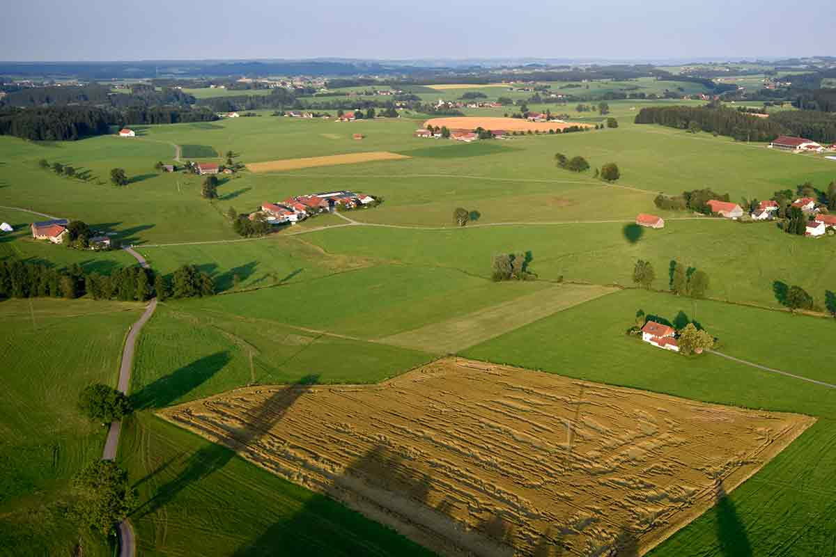 Feld mit Wetterschäden