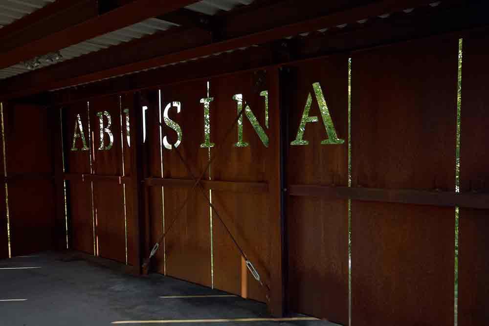 Abusina