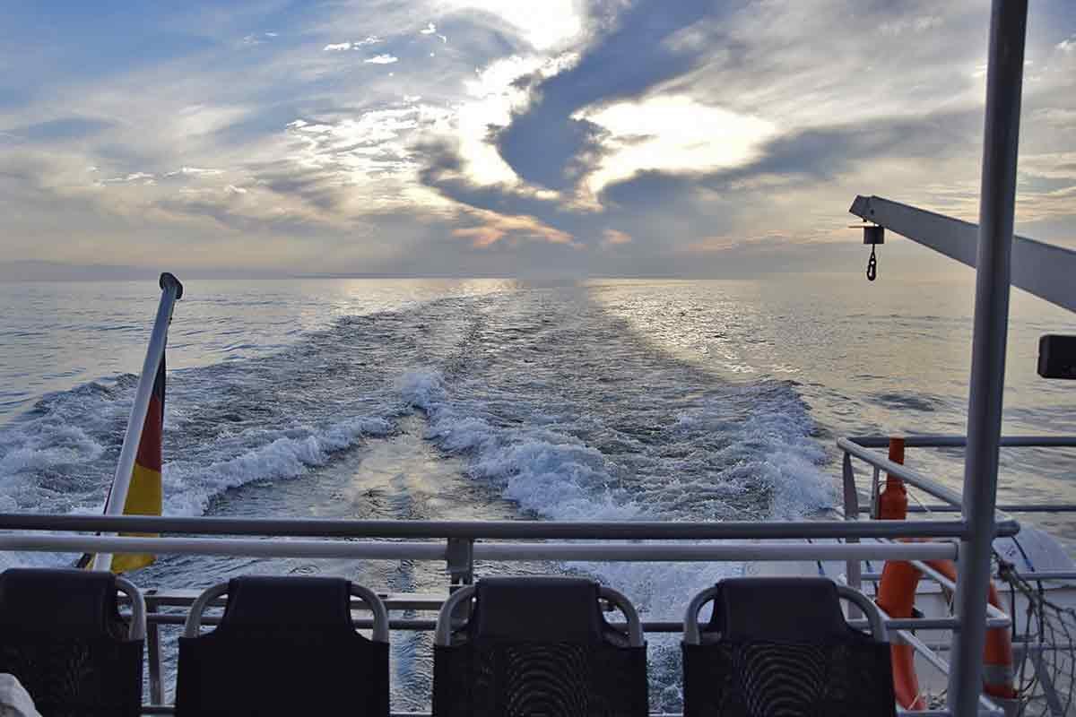 Bodensee-Winter mit Fisch und Ships