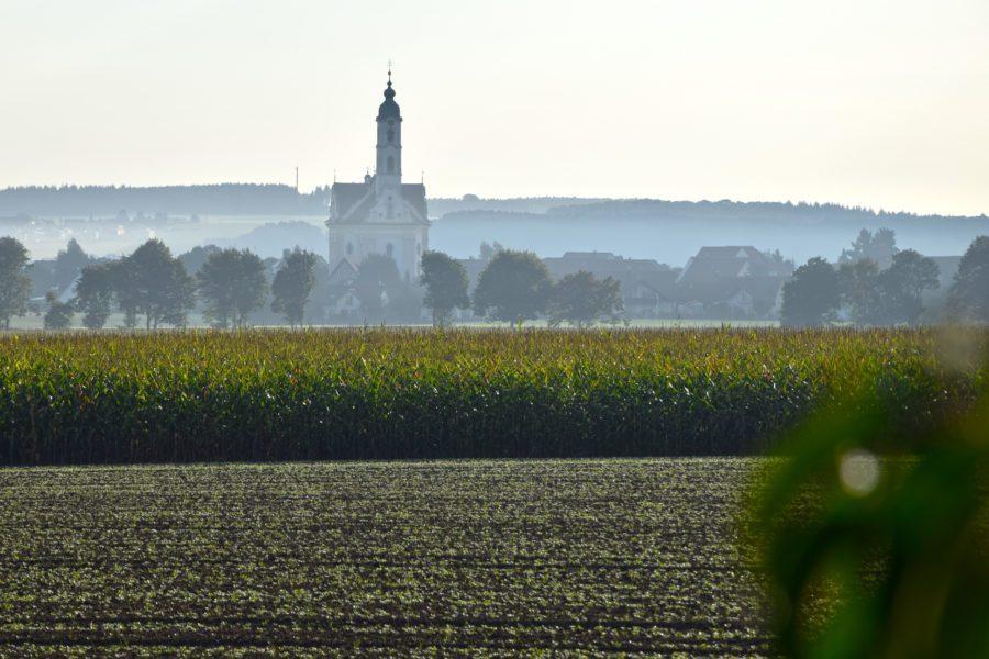 Dorfkirche Steinhausen